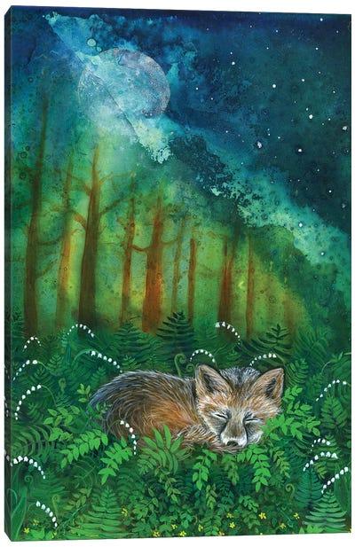 Dreaming Fox Canvas Art Print
