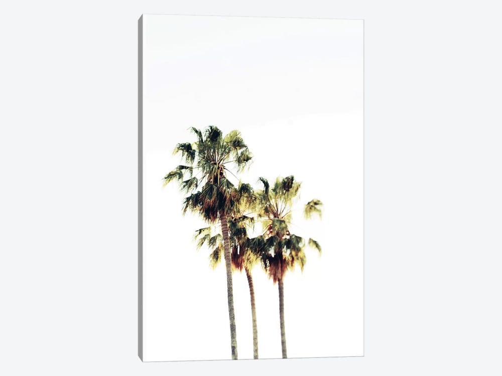 The Palms Blanc by Chelsea Victoria 1-piece Art Print