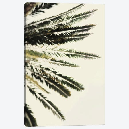 The Palms Canvas Print #CVA101} by Chelsea Victoria Art Print
