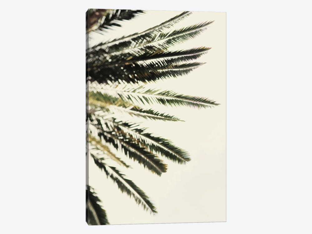 The Palms by Chelsea Victoria 1-piece Canvas Art