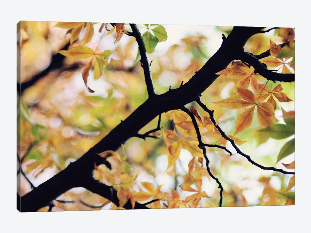 The Story Of Autumn by Chelsea Victoria 1-piece Art Print
