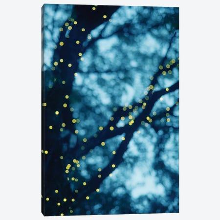 Through The Bokeh I Canvas Print #CVA108} by Chelsea Victoria Art Print