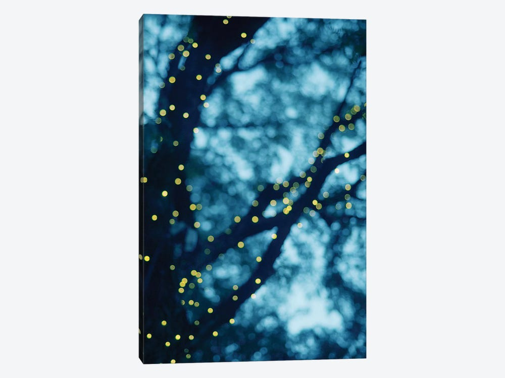 Through The Bokeh I by Chelsea Victoria 1-piece Canvas Print