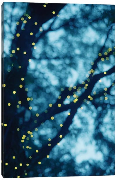 Through The Bokeh I Canvas Art Print
