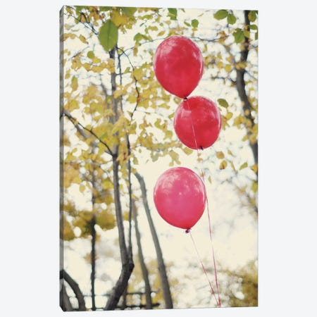 Can You See The Red Balloons Canvas Print #CVA10} by Chelsea Victoria Canvas Art