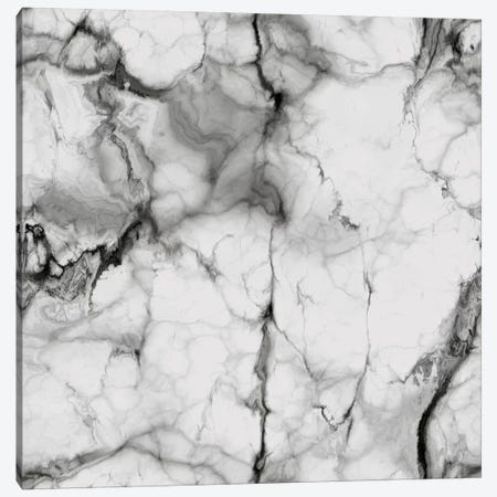 White Marble Canvas Print #CVA119} by Chelsea Victoria Canvas Artwork
