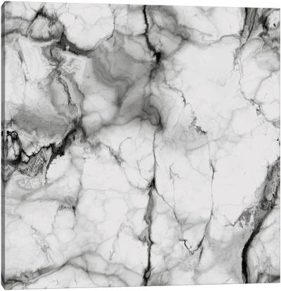 White Marble Canvas Print #CVA119