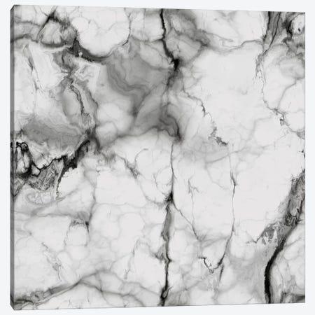 White Marble Canvas Print #CVA119} by Chelsea Victoria Canvas Artwork