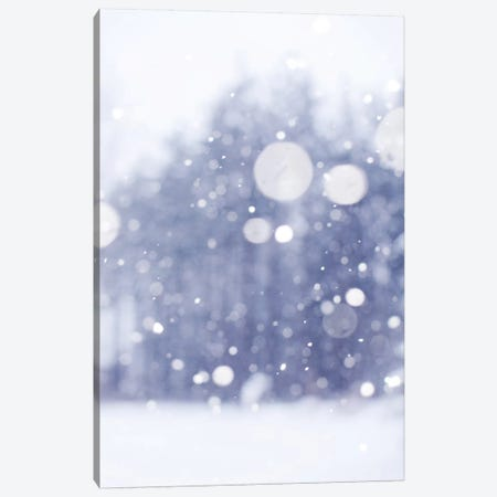 Winter Days Canvas Print #CVA120} by Chelsea Victoria Art Print