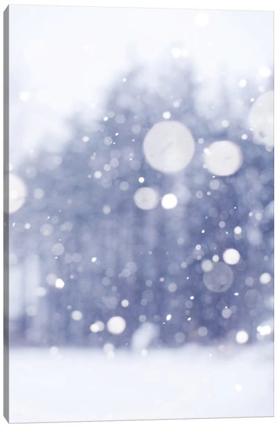 Winter Days Canvas Art Print