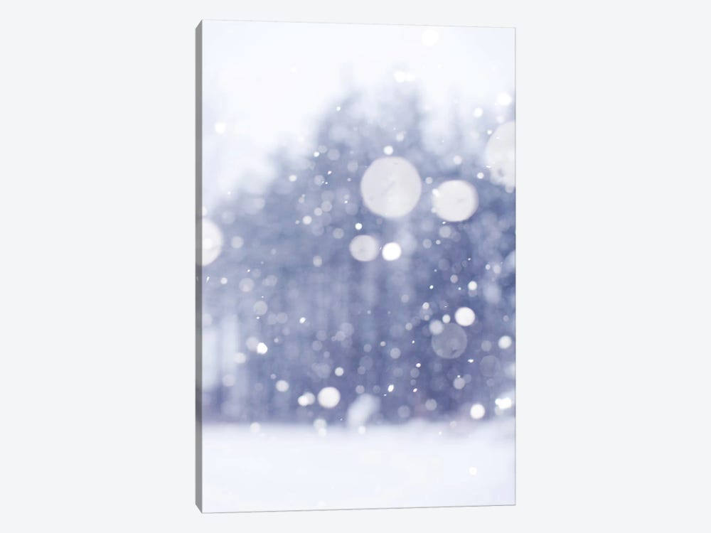 Winter Days by Chelsea Victoria 1-piece Canvas Print