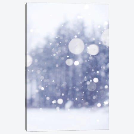 Winter Days Canvas Print #CVA120} by Chelsea Victoria Art Print