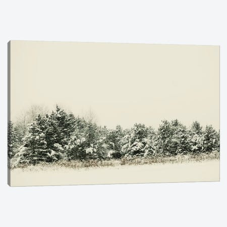 Winter Shades I Canvas Print #CVA124} by Chelsea Victoria Canvas Wall Art