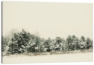 Winter Shades I Canvas Art Print
