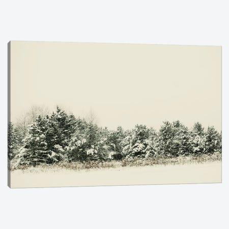 Winter Shades I Canvas Print #CVA124} by Chelsea Victoria Canvas Wall Art