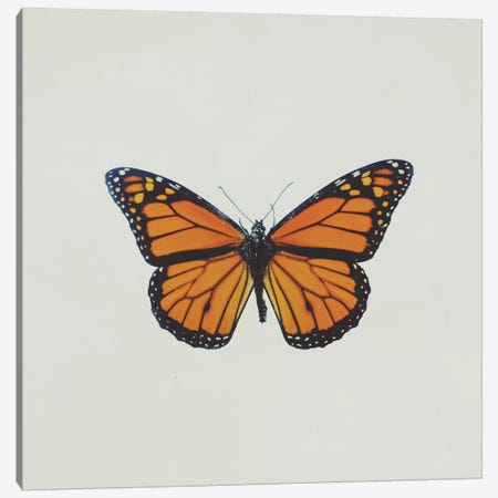 Butterfly Canvas Print #CVA126} by Chelsea Victoria Canvas Artwork