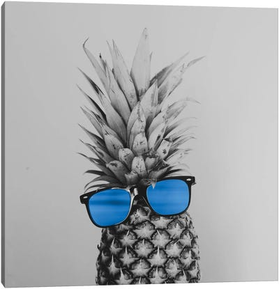 Mr. Pineapple II Canvas Art Print