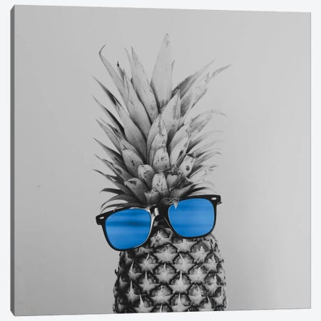 Mr. Pineapple II Canvas Print #CVA130} by Chelsea Victoria Canvas Art