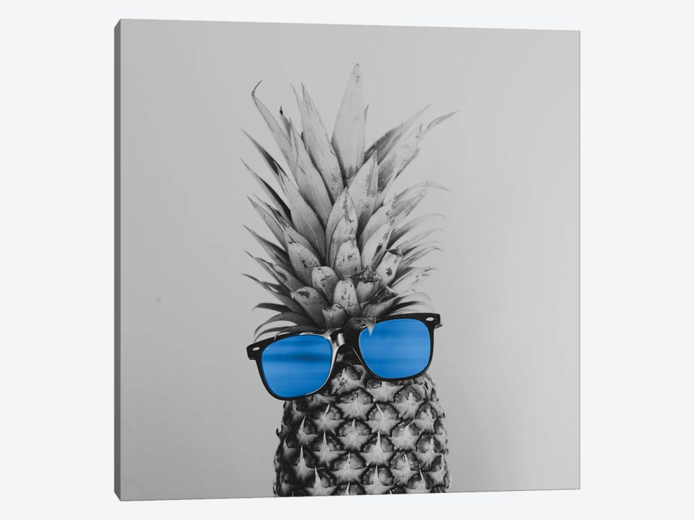 Mr. Pineapple II by Chelsea Victoria 1-piece Canvas Artwork
