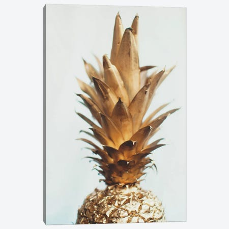 The Gold Pineapple Canvas Print #CVA135} by Chelsea Victoria Canvas Art Print