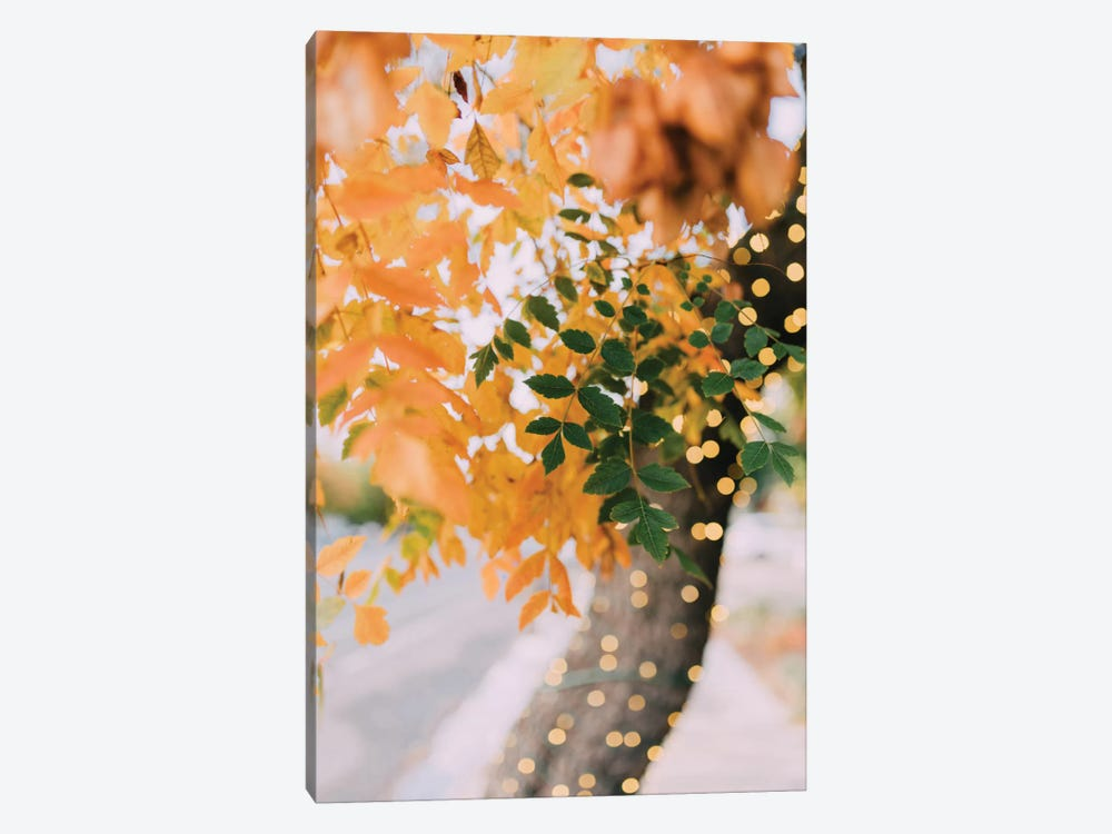 Autumn Sparkle by Chelsea Victoria 1-piece Canvas Art