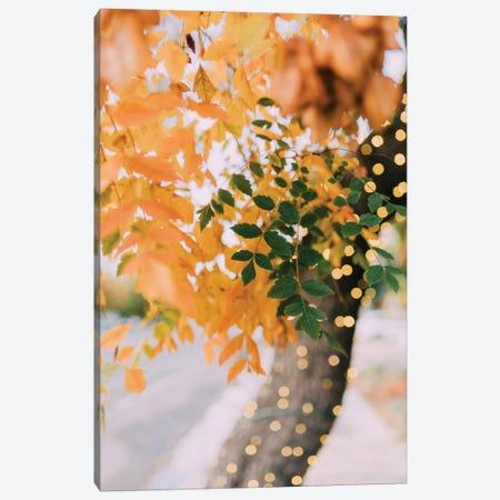 Autumn Sparkle Canvas Print #CVA136} by Chelsea Victoria Art Print