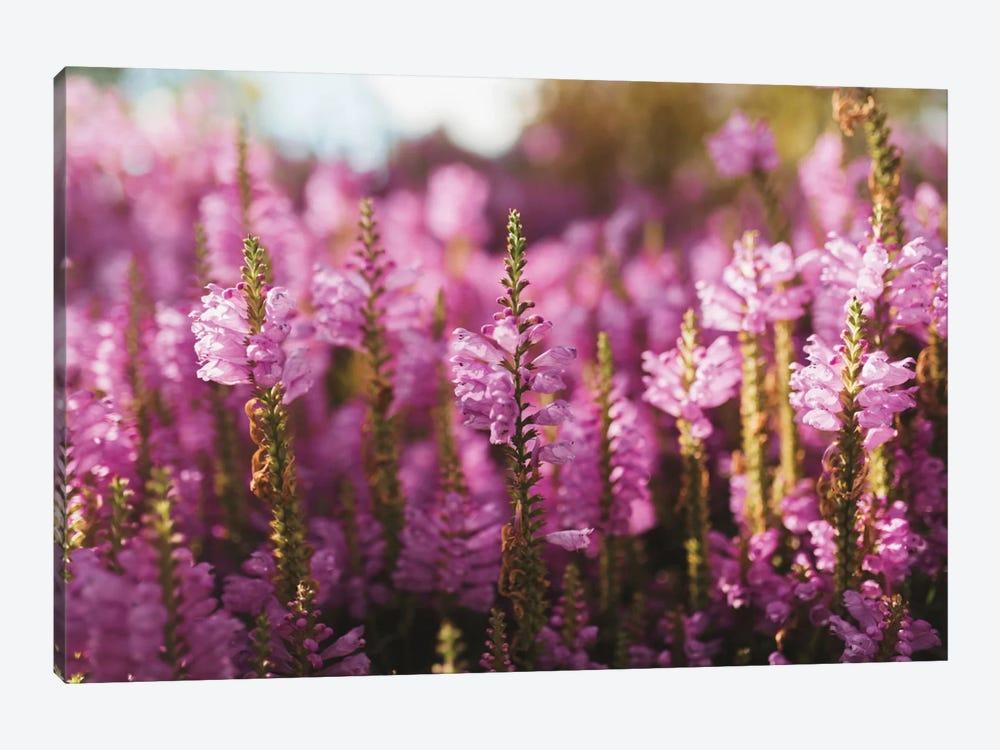 Desert Floral by Chelsea Victoria 1-piece Canvas Art Print