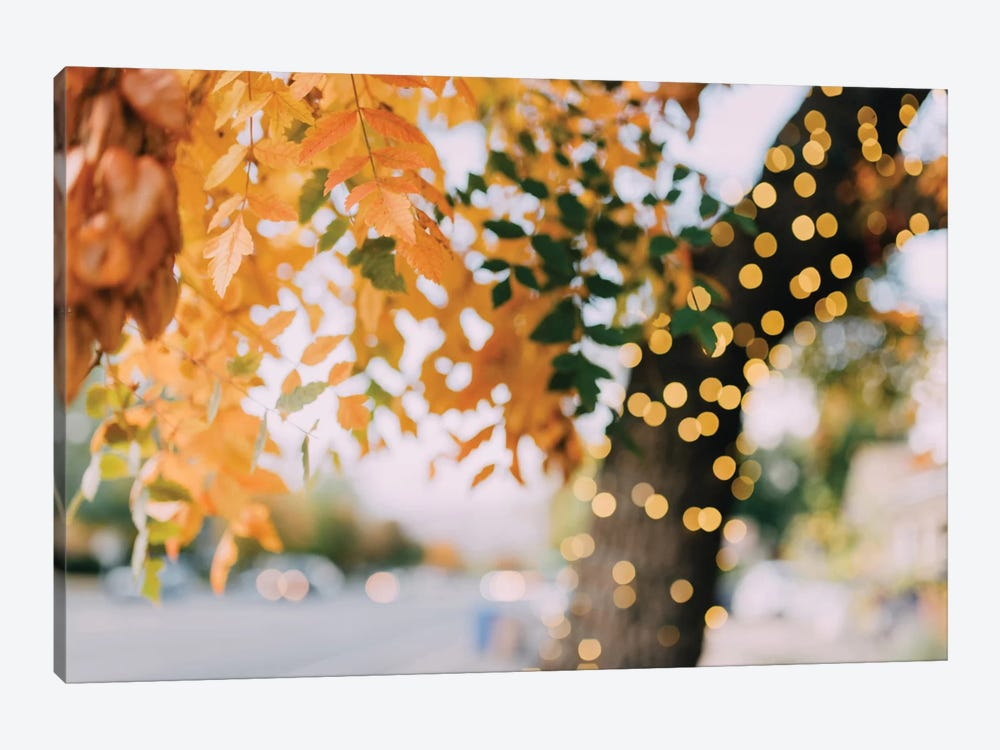 Sparkle And Glow by Chelsea Victoria 1-piece Canvas Artwork