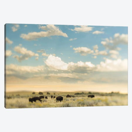 The Herd Canvas Print #CVA149} by Chelsea Victoria Art Print