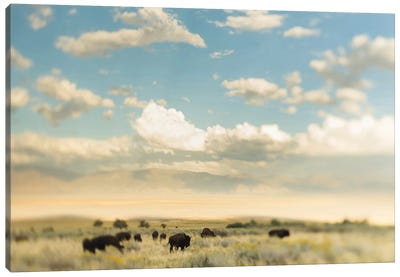 The Herd Canvas Art Print