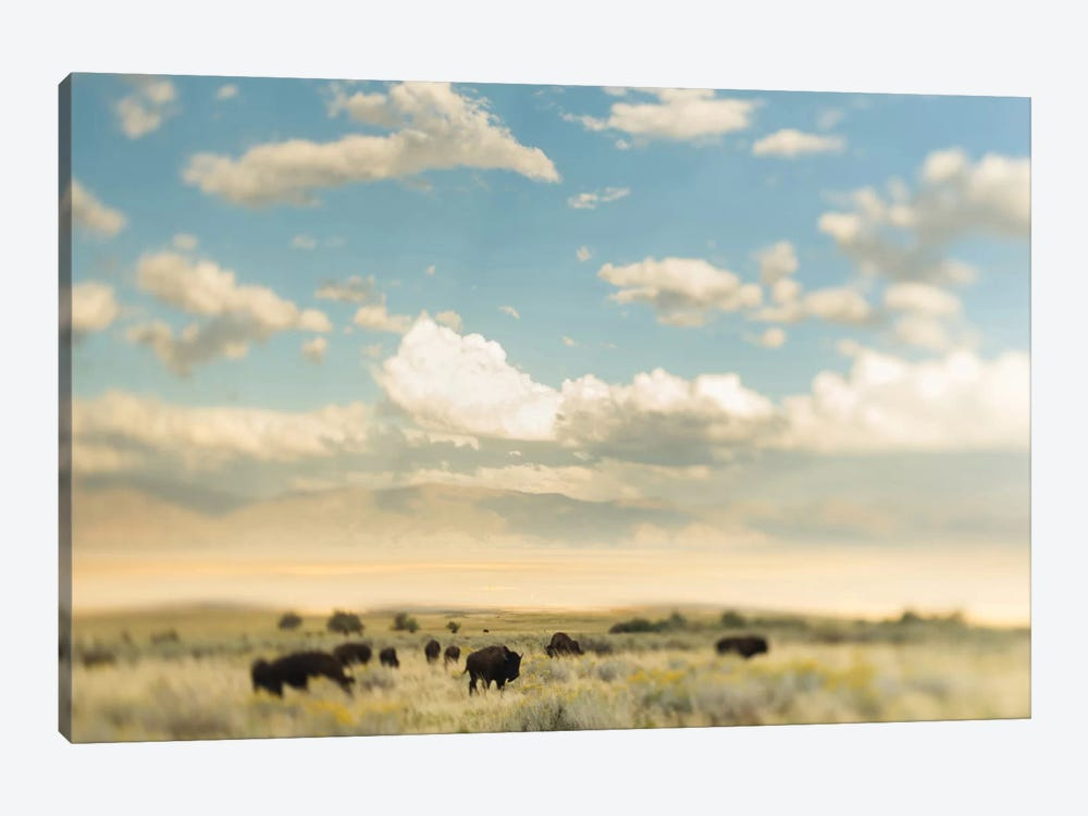 The Herd by Chelsea Victoria 1-piece Canvas Artwork