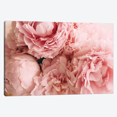 Blush Peonies Canvas Print #CVA153} by Chelsea Victoria Canvas Art