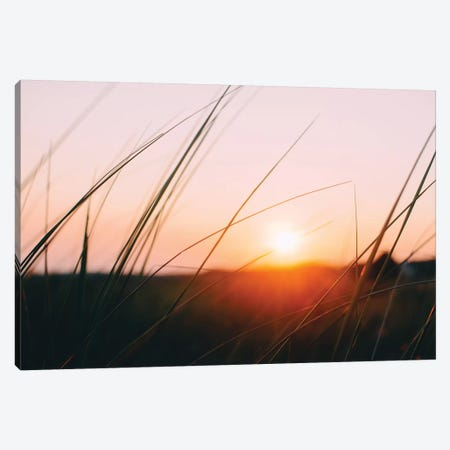 Cape Cod Meadow Canvas Print #CVA154} by Chelsea Victoria Art Print