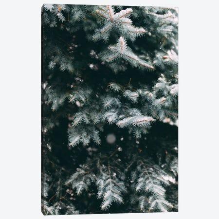 Falling Snow Canvas Print #CVA158} by Chelsea Victoria Canvas Artwork