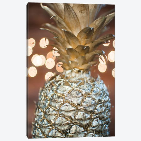 Gold Pineapple III Canvas Print #CVA161} by Chelsea Victoria Art Print