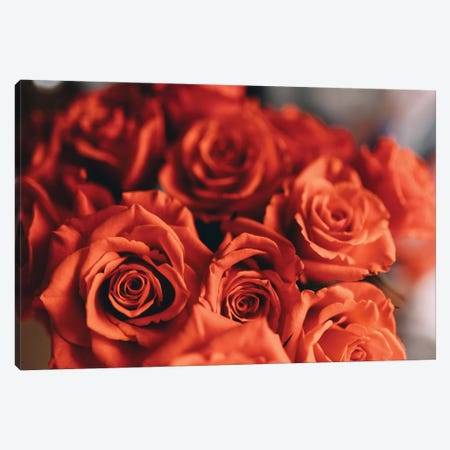 Orange Roses Canvas Print #CVA166} by Chelsea Victoria Canvas Art
