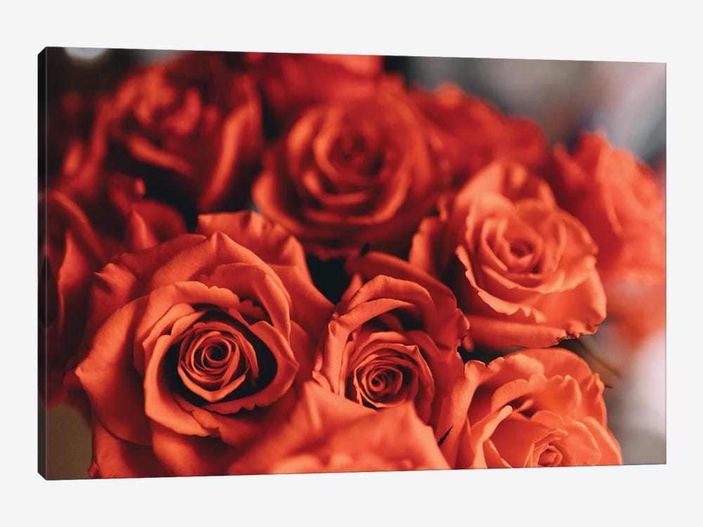 Orange Roses by Chelsea Victoria 1-piece Canvas Art Print