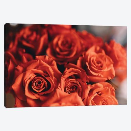 Orange Roses Canvas Print #CVA166} by Chelsea Victoria Canvas Art