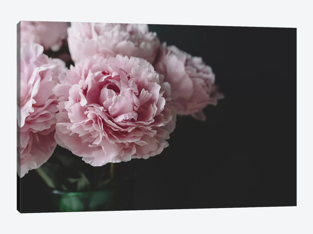 Peonies On Black I by Chelsea Victoria 1-piece Canvas Wall Art