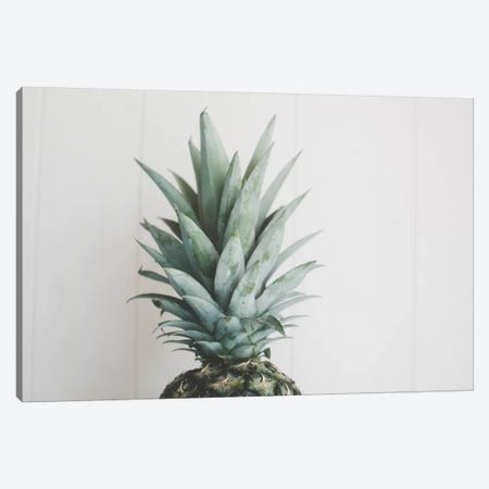 Pineapple Top II Canvas Print #CVA172} by Chelsea Victoria Canvas Wall Art