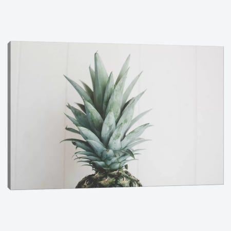 Pineapple Top II Canvas Print #CVA172} by Chelsea Victoria Canvas Wall Art