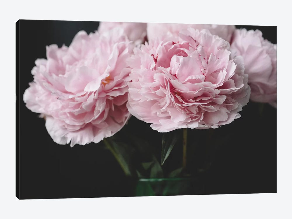 Pink Peonies by Chelsea Victoria 1-piece Art Print