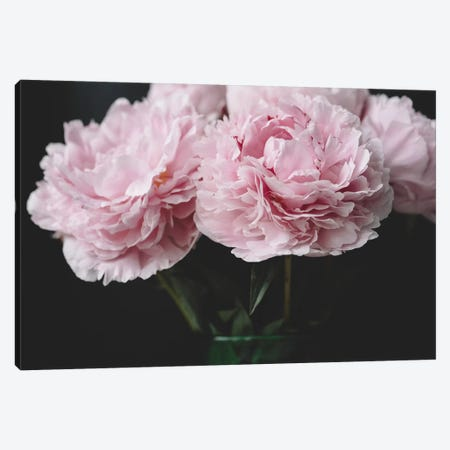 Pink Peonies Canvas Print #CVA175} by Chelsea Victoria Art Print