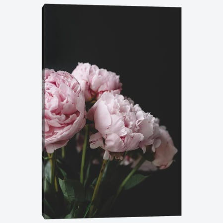 Pink Peonies On Black I Canvas Print #CVA176} by Chelsea Victoria Canvas Art Print
