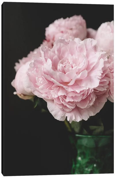 Pink Peonies On Black II Canvas Art Print