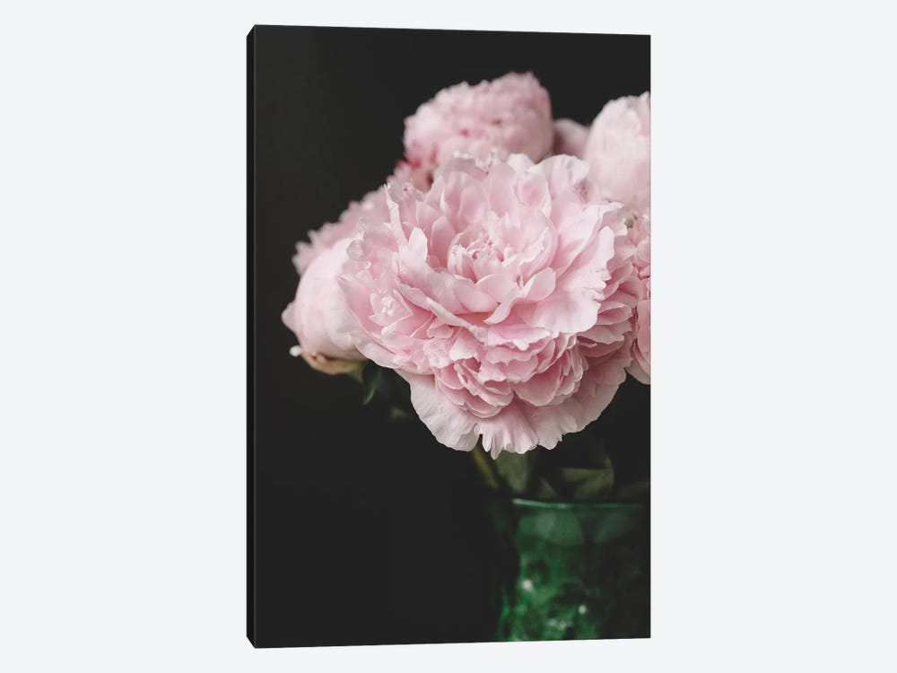 Pink Peonies On Black II by Chelsea Victoria 1-piece Canvas Print