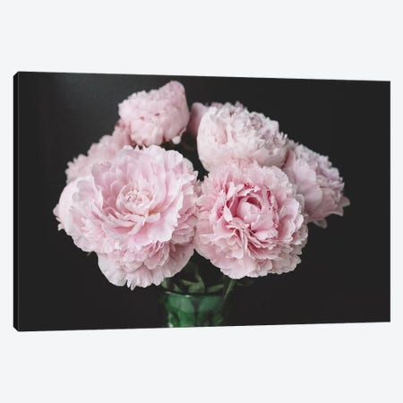 Pink Peonies On Black III Canvas Print #CVA178} by Chelsea Victoria Canvas Art