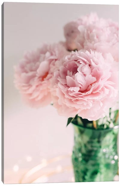 Pink Peonies On White II Canvas Art Print