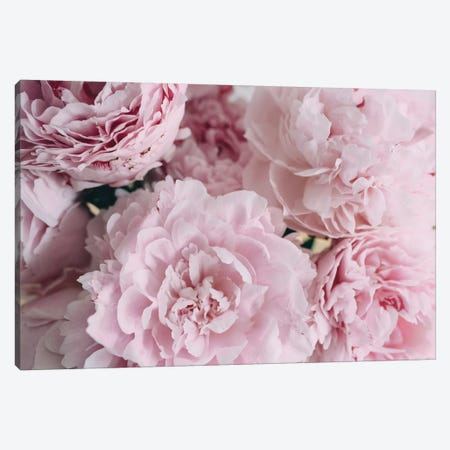 Pink Peonies Top Canvas Print #CVA181} by Chelsea Victoria Canvas Art Print