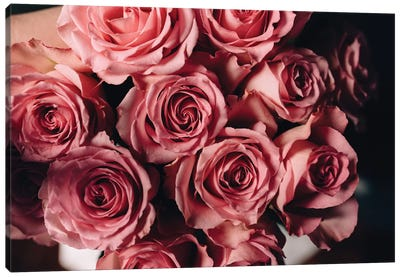 Pink Roses On Top Canvas Art Print